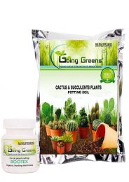Combo of Cactus & Succulent Potting Mix for Plants (800 Grm) with Rootex Rooting Hormone Powder for All Plants(25 Grm)