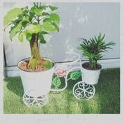 Wrought Iron Double Pot Cycle stand, White