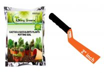 Combo of Potting Soil Mix for Cactus & Succulent Plants 2Kg and 2 Inch Khurpa for Pots
