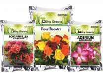 Combo of Bougainvillea Bloom Booster (450 GMS), Adenium Bloom Booster (450 GMS) and Rose Booster (900 GMS)