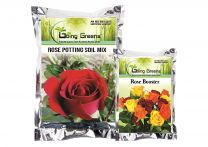 Combo of Rose Potting Soil Mix 5 kgs and Rose Booster 900 GMS