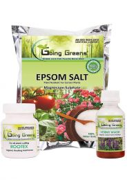 Combo of Epsom Salt  (250 Gm), Vermiwash (100 ml) and Rootex Rooting Powder (25 Gm)