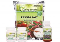 Combo of Epsom Salt  (250 Gm), Vermiwash  (100 ml) and Rootex Rooting Powder 50 Gm (25 Gm x 2)