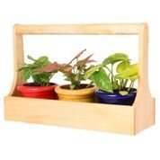 Garden Decorative Wooden Planter with 3 Ceramic Pots (Red, Yellow & Blue)