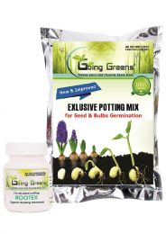 Combo of Exclusive Potting Mix for Seeds & Bulbs Germination (800 Grams) with Rootex Organic Rooting Harmones Powder (25 g)