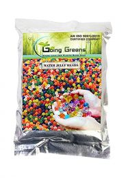 Water Jelly Beads - 20 Gm (Multicolored)
