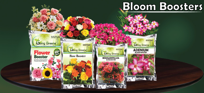 Bloom Booster 2